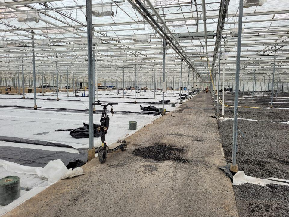 Werk 's Gravenzande | Kalksteen | Agro